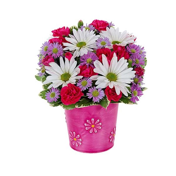 """It's a daisy day"" bouquet (BF396-11KM)"